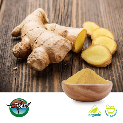 Organic Ginger Root Powder by Ningbo Traditional Chinese Pharmaceutical Corp.