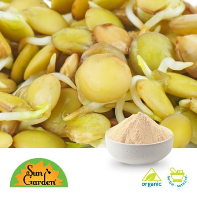 Organic Green Lentil Sprout Powder by SunGarden