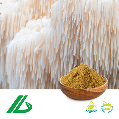 Organic Lion's Mane Extract 30% Polysaccharide (25kg Drum) by Xian Laybio Natural Ingredients Co., Ltd