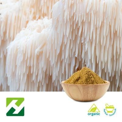 Organic Lion's Mane Mushroom Extract 40% Polysaccharides (25kg Drum) by Organic Herb Inc.