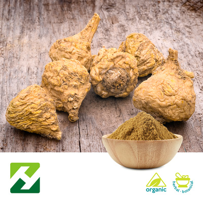 Organic Maca Root Extract 4:1 (25kg Drum) by Organic Herb Inc.