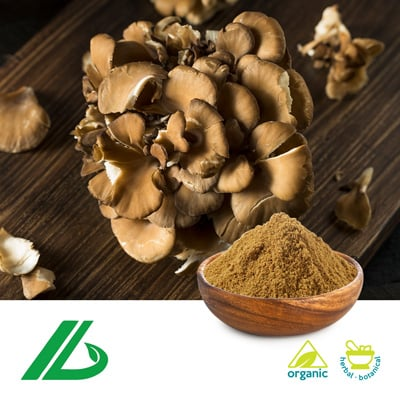 Organic Maitake Extract 30% Beta Glucan (25kg Drum) by Xian Laybio Natural Ingredients Co., Ltd