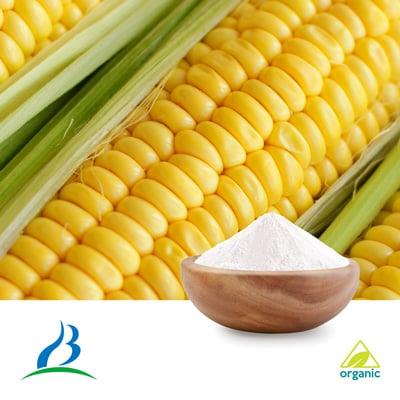 Maltodextrin DE10-12 (Organic) by Baolingbao Biology