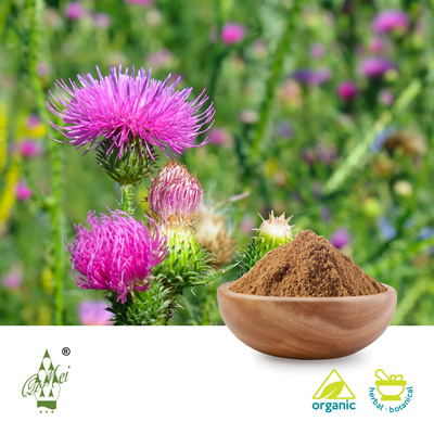 Organic Milk Thistle Powder by Qimei Industrial Group Co.,Ltd