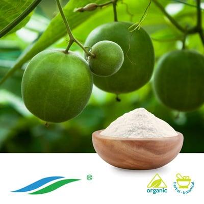 Organic Monk Fruit Extract 25% HPLC by Hunan NutraMax Inc.