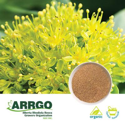 Organic Rhodiola Rosea Root (0.8-1.0% Rosavins) (Milled) by ARRGO