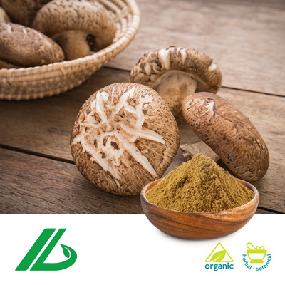 Organic Shiitake Mushroom Extract 30% Beta Glucan (25kg Drum) by Xian Laybio Natural Ingredients Co., Ltd