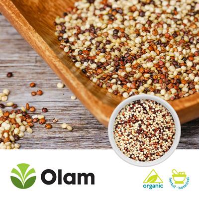 Organic Tricolor Quinoa by Olam