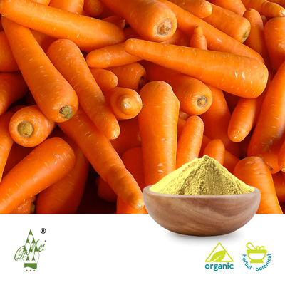 Organic Carrot Powder by Qimei Industrial Group Co.,Ltd