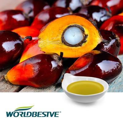 Palm Tocotrienols-TP70 by Zhejiang Worldbestve Biotechnology Co., Ltd