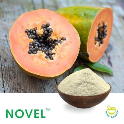 Ultra refined Papain Powder 1100 TU/mg ( 66000 USP Units ) by Novel Nutrients
