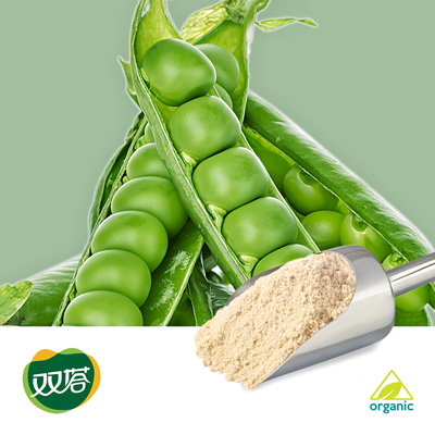 Pea Protein 80% (Organic) by Shuangta Food