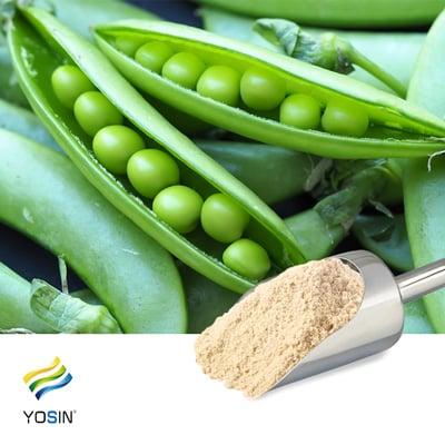 Pea Protein Isolate 80% by Yosin Biotechnology(Yantai)Co.,Ltd.
