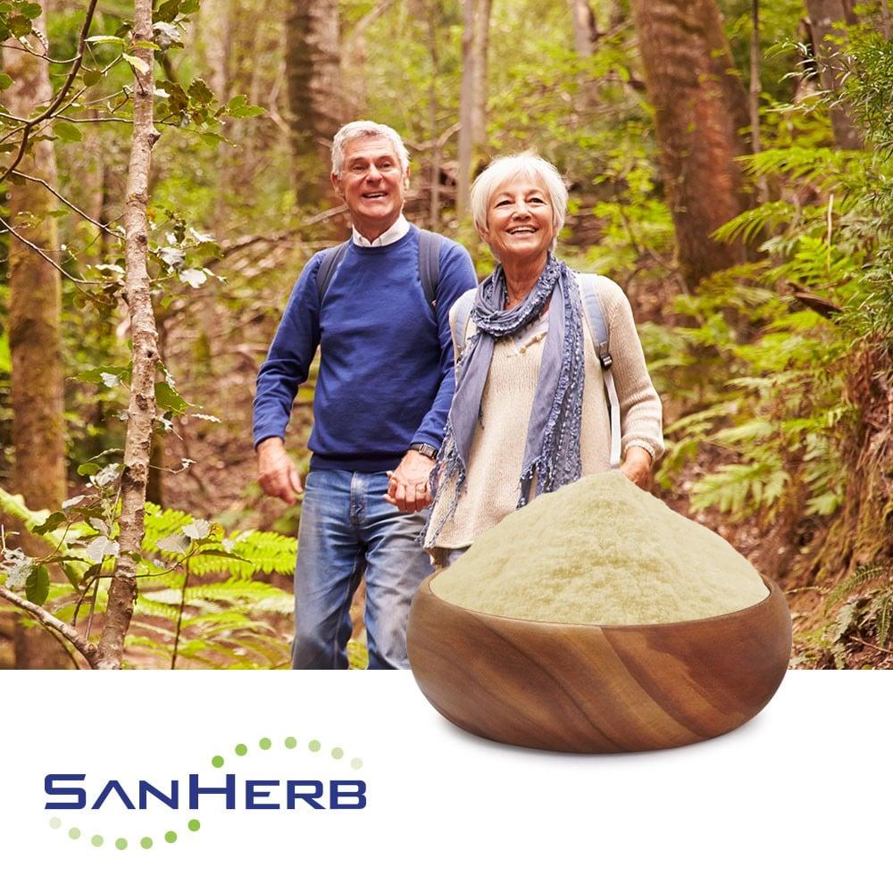 Phosphatidylserine 50% (Sunflower) by SanHerb