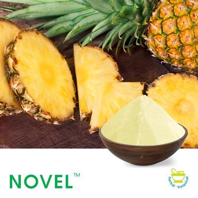 Pineapple Spray Dried Powder by Novel Nutrients