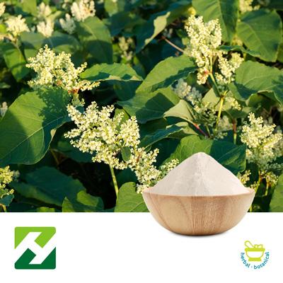 Polygonum Cuspidatum Extract 98% Trans-resveratrol HPLC (25kg Drum) by Organic Herb Inc.
