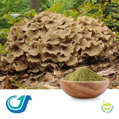Polyporus Mushroom 20:1 Full-Spectrum Extract by Tianjiang Pharmaceutical Co., Ltd.