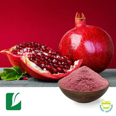 Pomegranate Fruit Powder by Longze Biotechnology