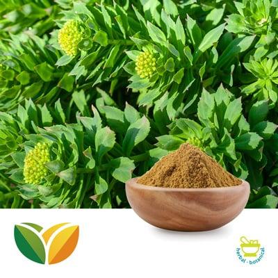 Rhodiola P.E. 1% Salidroside by Tianhua Pharmaceutical