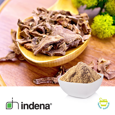 Rhodiola Rosea Extract 3% by Indena