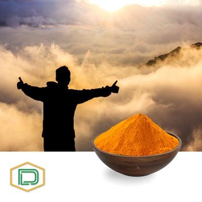 Riboflavin-5-phosphate sodium by Danashmand Organic