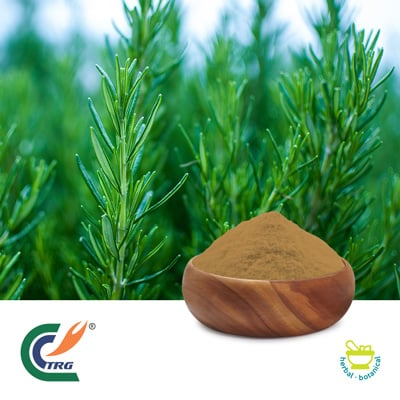 Rosemary Extract 10:1 by Hanzhong Trg Bioctech Co., Ltd.