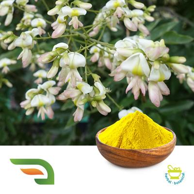 Rutin by Chongqing Joywin Natural Products Co.,Ltd.