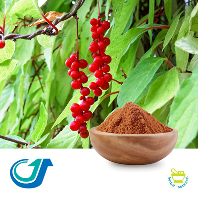 Schisandra Berry (Processed) 6:1 Full-Spectrum Extract by Tianjiang Pharmaceutical Co., Ltd.