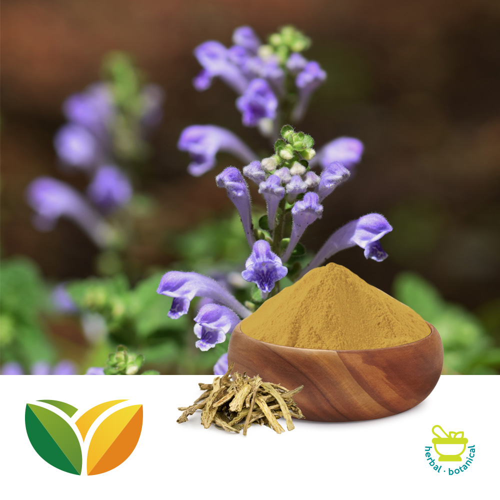 Scutellaria Baicalensis Powder by Shandong Tianhua Pharmaceutical Co., Ltd.