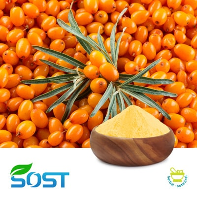 Sea Buckthorn Juice Powder by Xi An Sost Biotech Co., Ltd