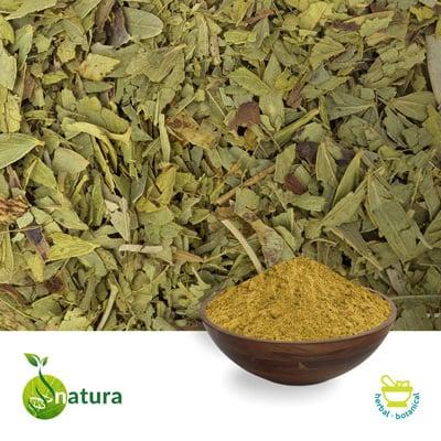 Senna Leaf P.E. 20% by Natura Biotechnol Private Limited