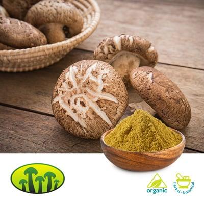 Organic Shiitake extract 8:1 by Zhejiang Biosan Biotech Co., Ltd.