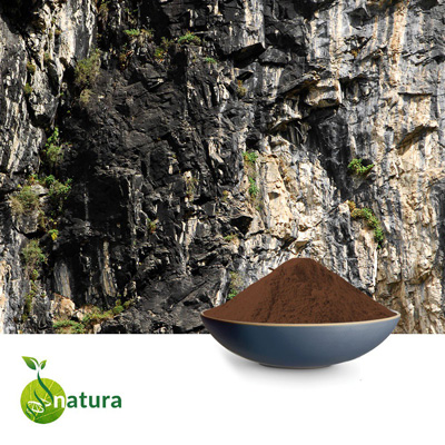 Shilajit Extract 20% Fulvic Acid by Natura Biotechnol Private Limited