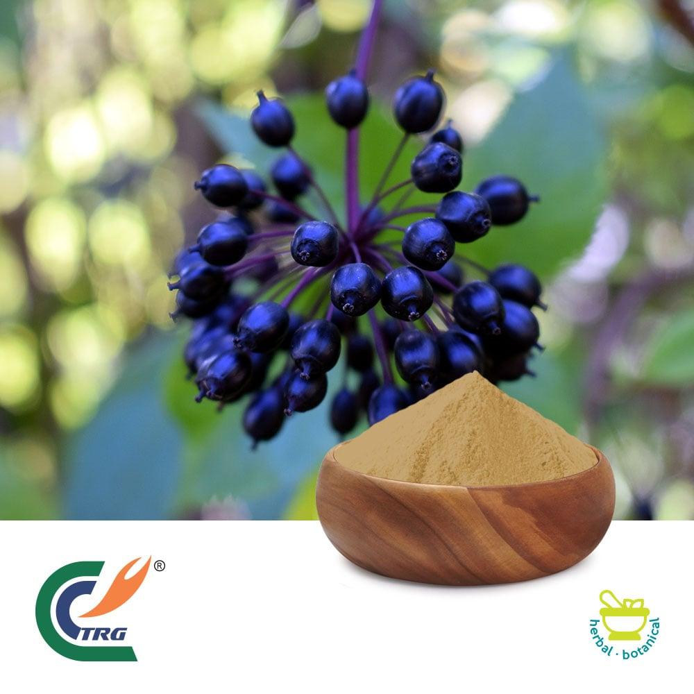 Siberian Ginseng Extract 4:1 by Hanzhong Trg Bioctech Co., Ltd.