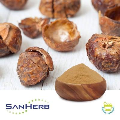 Soapnut Extract 70% Saponin by SanHerb