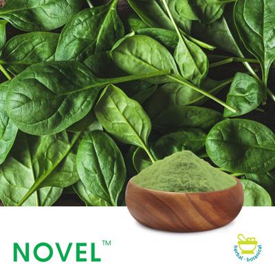 Spinach Powder (Spray Dried) by Novel Nutrients