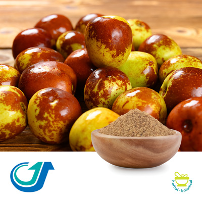Spiny Jujube Kernel 20:1 Full-Spectrum Extract by Tianjiang Pharmaceutical Co., LTD.