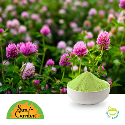 Organic Sprouted Red Clover Powder by SunGarden