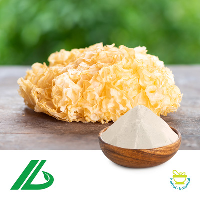 Tremella Fuciformis Extract 30% Glucan 25kg Drum by Xian Laybio Natural Ingredients Co., Ltd