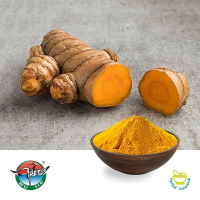 Turmeric Root Powder(Pb ≤0.8ppm) by Ningbo Herb