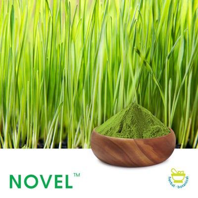Wheat Grass Powder by Novel Nutrients
