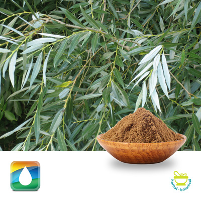 White Willow Bark Extract 2% Salicins (HPLC) by Monteloeder
