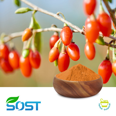 Wolfberry Juice Powder by Xi An Sost Biotech Co., Ltd