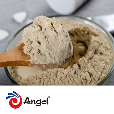 Zinc Yeast Powder 100000ppm by Angel Yeast Co.,Ltd.
