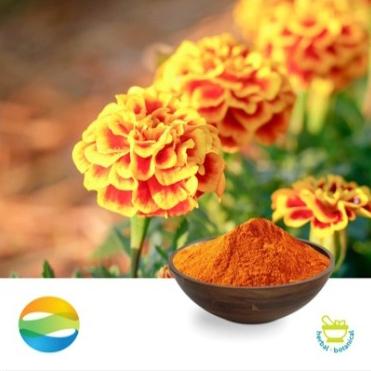 Lutein 20% Powder HPLC by CCGB