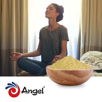 Nutritional Yeast Powder F50 by Angel Yeast