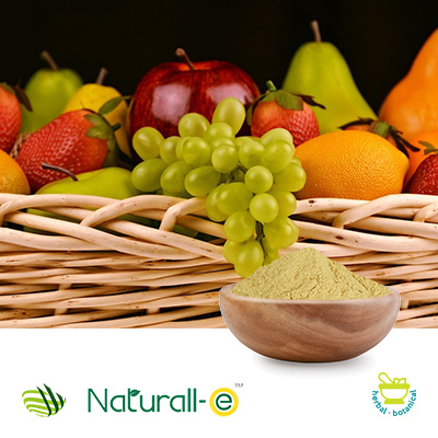 Natural Mixed Tocopherol 30% Powder Gum Acacia (SO-T30PG) by Matrix Fine Sciences