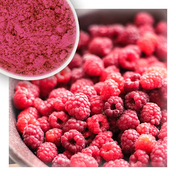 Raspberry Fruit Powder by Longze Biotechnology